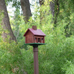 """""""Log Cabin Bird House - mounted"""" by Marni http://www.flickr.com/photos/23276140@N08/3866850849/in/photostream/"""